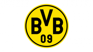 Logo des BVBs